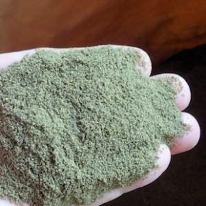 北欧産海藻粉末